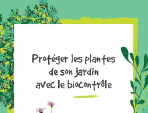 Protéger les plantes de son jardin avec le biocontrôle